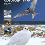 Common-Birds-Inuktitut-cover